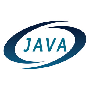Java Professionals