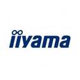 Iiyama International