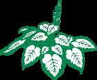 Hoveniersbedrijf & Vasteplantenkwekerij Homan