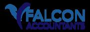 Falcon Accountants B.V.