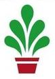 Potplanten kwekerij Ron vd Bosch
